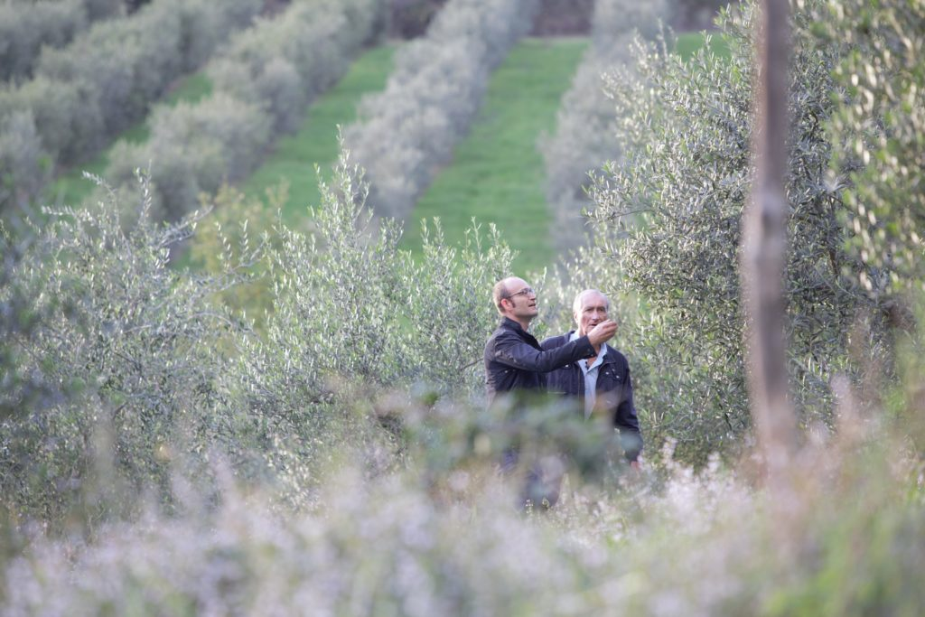 Christian och Fernando Di Luca i olivlund